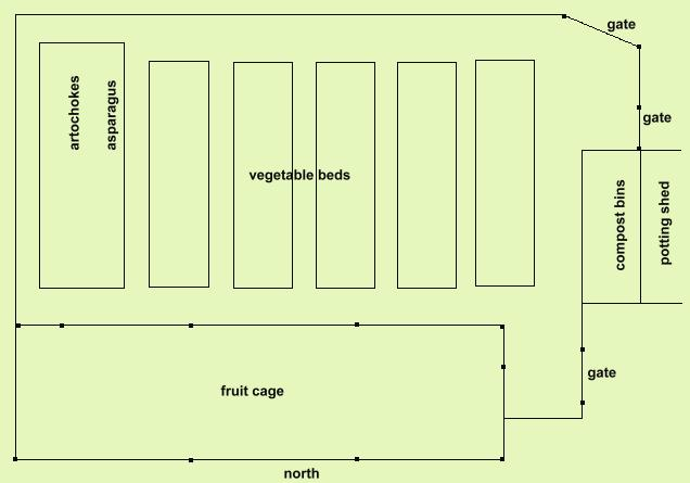 a diagram of the vegetable plot